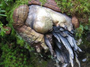 Zwobels Höhleneingang im Zauberwald