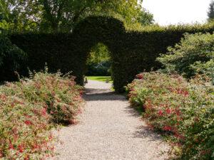 Fuchsien Doppel Border, Nymans Garden