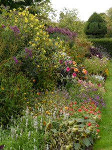 Doppel-Mixed-Border, Nymans Garden,