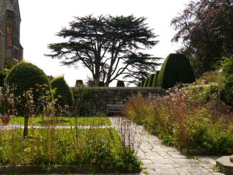 Hausgarten ummauert mit Libanon-Zeder im Hintergrund, Nymans Garden