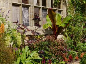 Exotische Bepflanzung vor der Ruine, Nymans Garden