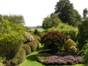 Im Heidegarten, Heather Garden, Nymans Garden