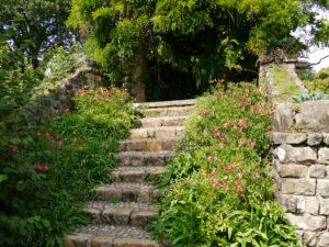 Aussichtstreppe mit Alstroemeria in Nymans Garden