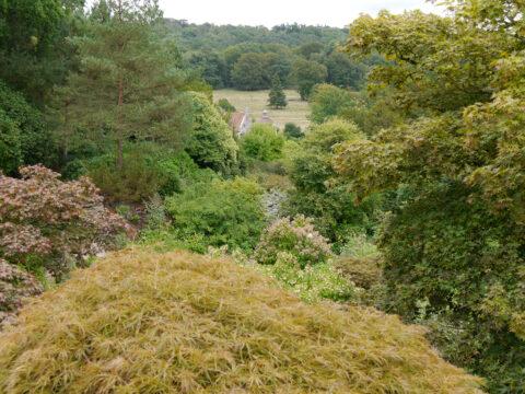 Scotney, Blick über das Gartental zum Arboretum