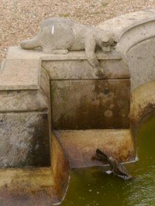 Das Kätzchen am Brunnen