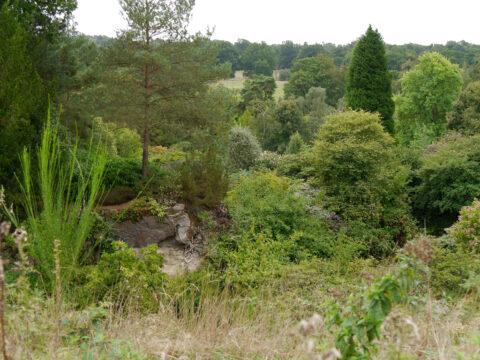 Der Steinbruch in Scotney Castle