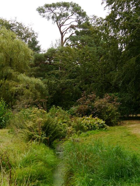 Kleiner Wassergraben im Landschaftspark von Scotney