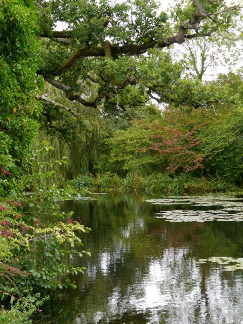 Am Wassergraben von Scotney