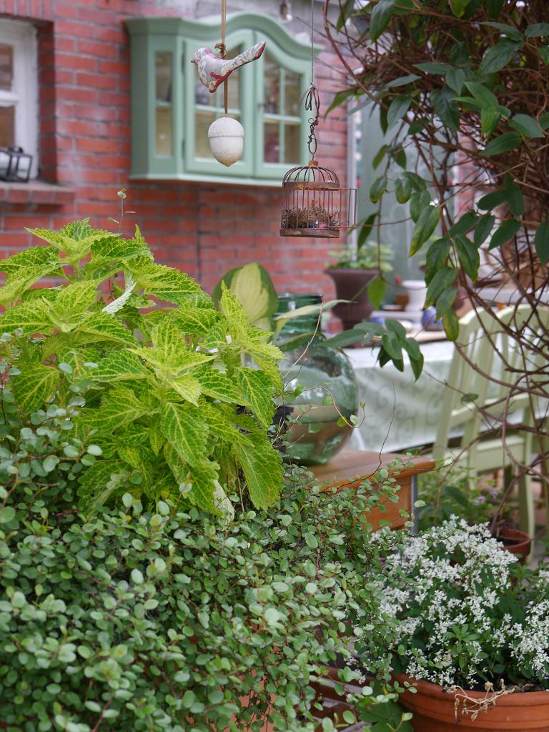 Die Veranda auf der Rückseite des Hauses