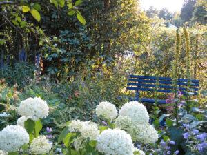 Die blaue Bank im Romantischen Garten