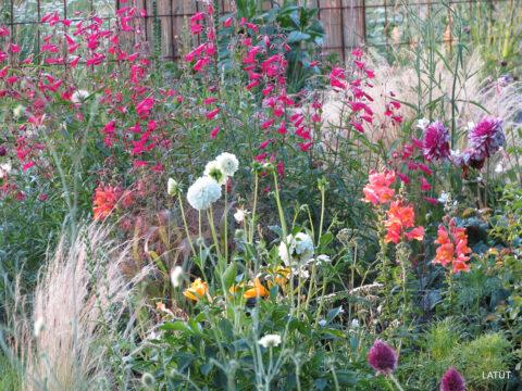 Im Poetischen Garten