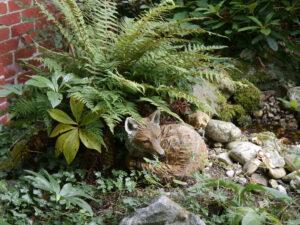 Das Füchslein neben der Bachquelle in Wurzerls Garten