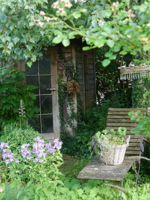 Die Teakholz-Liege vor der Gartenhütte neben der Birke