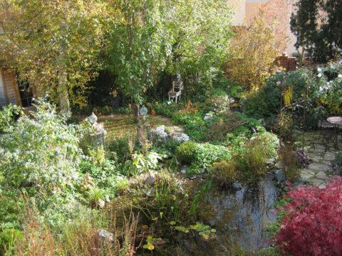 Übersicht über einen Großteil des Gartens