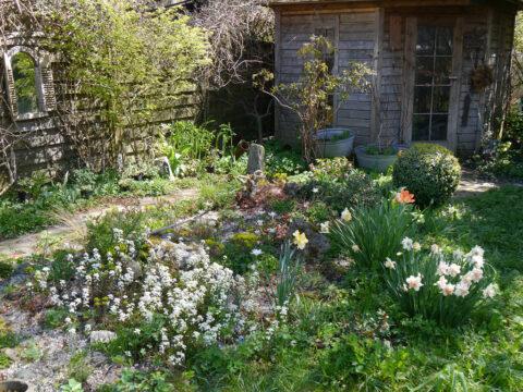 Blick über Steingarten zur Hütte