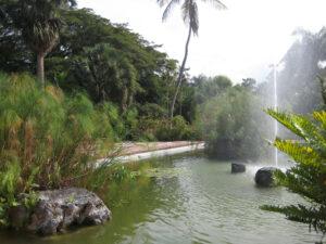 Die Wasserlandschaft im Eingangsbereich des Botanischen Gartens von Santo Domingo