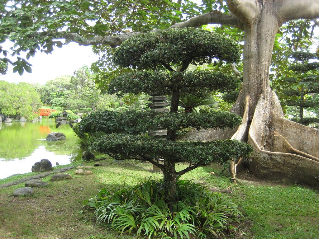 Japanischer Garten im Botanischen Garten von Santo Domingo