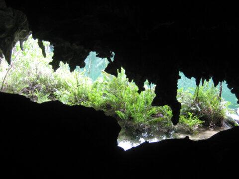 """Unterwegs zum 4. See der Höhle """"Los Tres Ojos"""" in Santo Domingo"""
