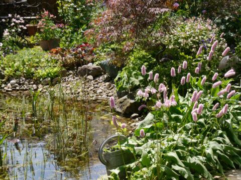 Wurzerls Garten
