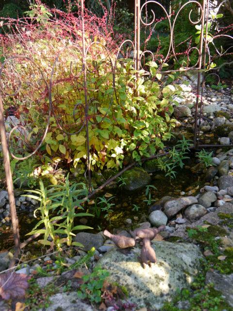 Das Bächlein im Rosenrondell von Wurzerls Garten