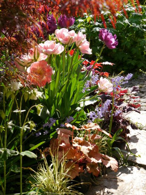 Frühlingsbeet in Wurzerls Garten