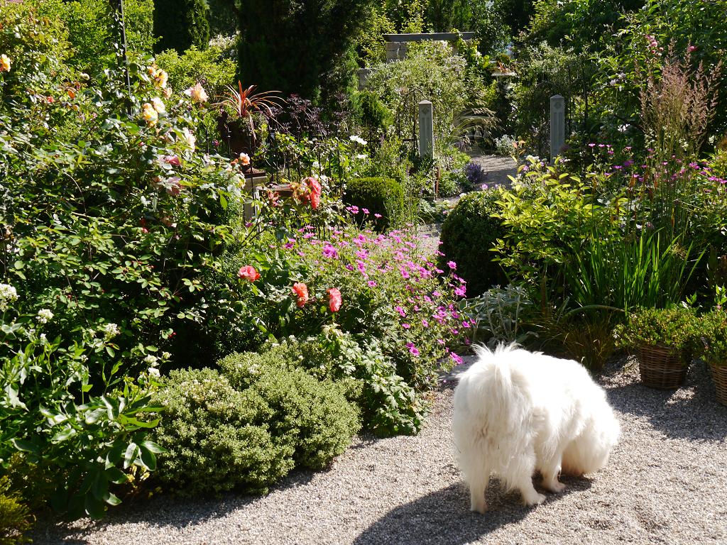 zweite Sichtachse von der oberen Terrasse, Garten Petra Steiner