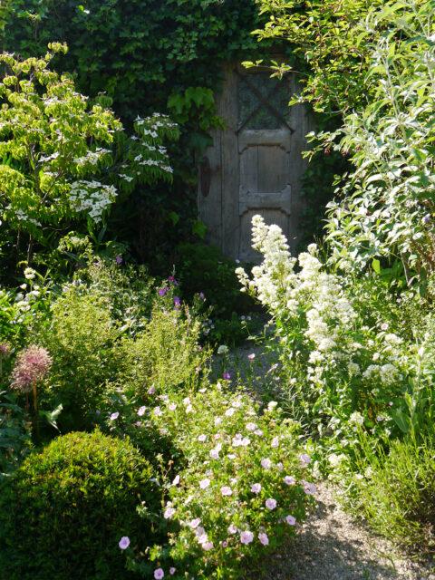 Die geheime Tür am 'Secret Garden', Garten Petra Steiner