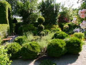 Einem Knotengarten nachempfundenes Beet im