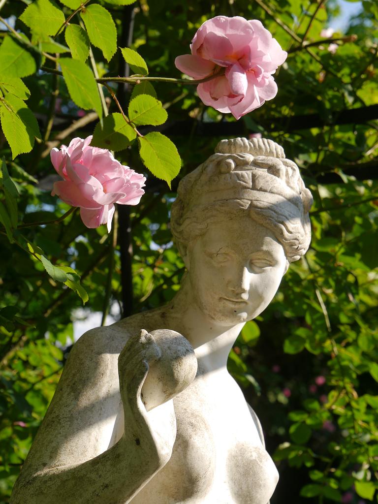 """Die """"Schöne Helena"""" im unteren Garten von Petra Steiner"""