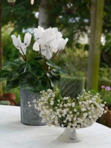Dekoration auf der Terrasse Garten Schroth