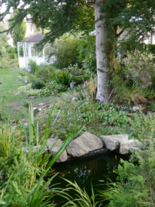 Blick von der Terrasse auf die rechte Gartenseite, Garten Schroth