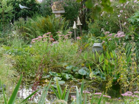 Gartenteich im Garten Schroth