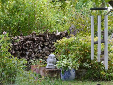 Naturschutz im Stadtgarten, Garten Schroth
