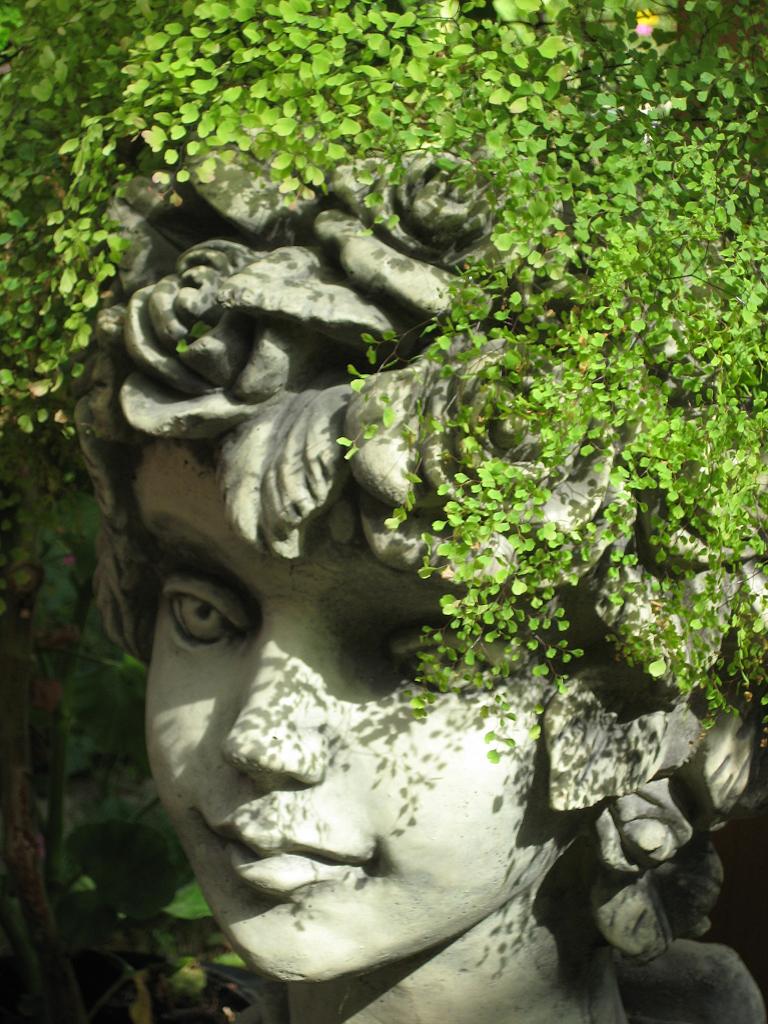 Bubikopf auf Rosenkopf? Wurzerls Garten