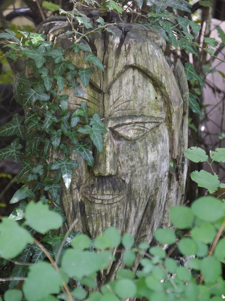 Der Gartenwächter macht auf Einauge in Wurzerls Garten.