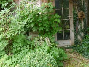 Die Hüttenecke in Wurzerls Garten