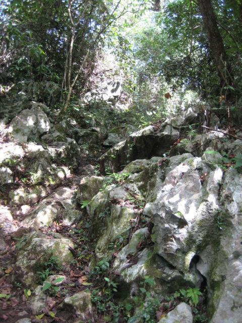 """Der Einstieg zur """"Fun-Fun Höhle"""" in der Dominikanischen Republik"""