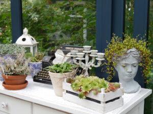 Wintergarten im Moorjuwel von Hedwig Weerts