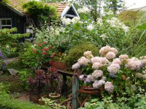 Der Garten erreicht hier seine ganze Breite, links das Tuunhaus vom Moorjuwel, Hedwig Weerts