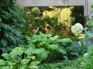 Eine Spiegelwand im vorderen Schattenbereich, Garten Irmgard Hantelmann
