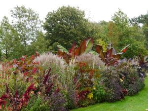 Blumenband im Park der Gärten, Bad Zwischenahn
