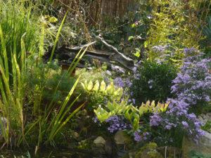 Aleida Zuchs Garten im Taka Tuka-Land