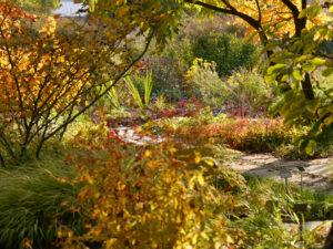 Habitat Gehölzrand Sichtungsgarten Weihenstephan