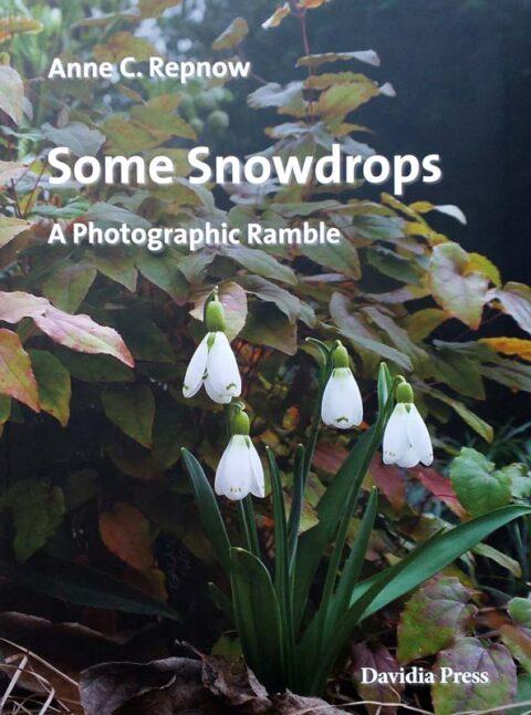 Buch-Cover 'Some Snowdrops' Anne Repnow