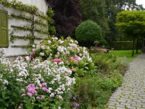 Hausbeet, Dina Deferme, Belgien