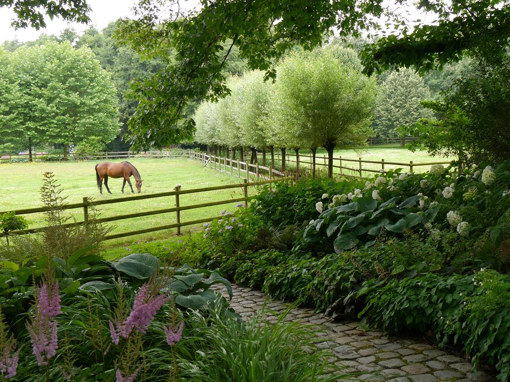 Die Pferdekoppel, Dina Deferme, Belgien