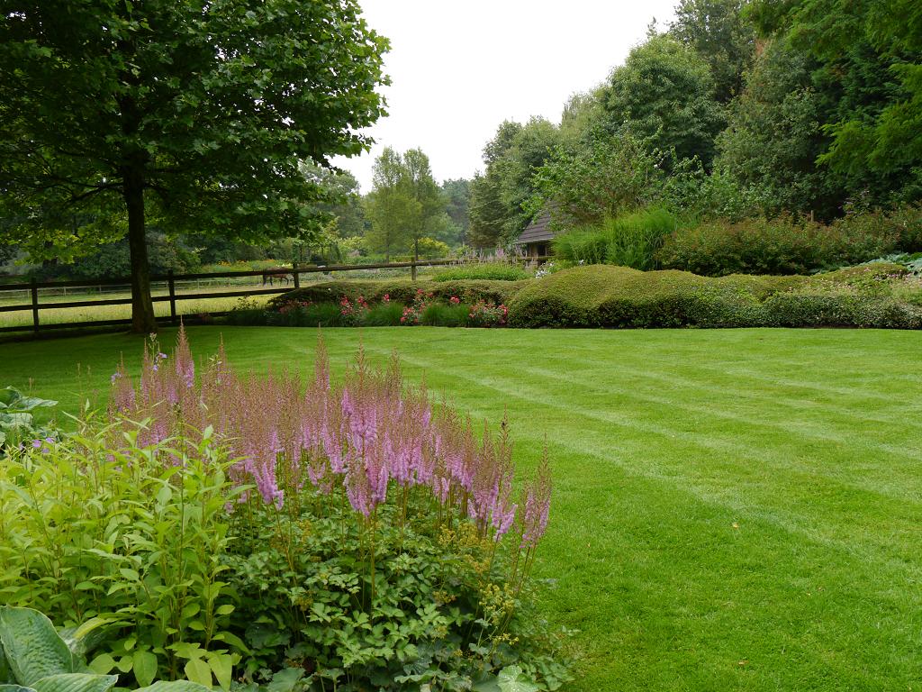 Astilben im Teichgarten, Dina Deferme, Belgien