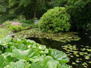 Teichgarten, Dina Deferme, Belgien