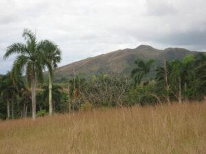 Hügelige Landschaft im Landesinneren, Dominikaniasche Republik