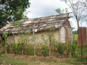 Die Hütten auf dem Land sind oft nur mit Bananenblättern abgedeckt, Dominikanische Republik